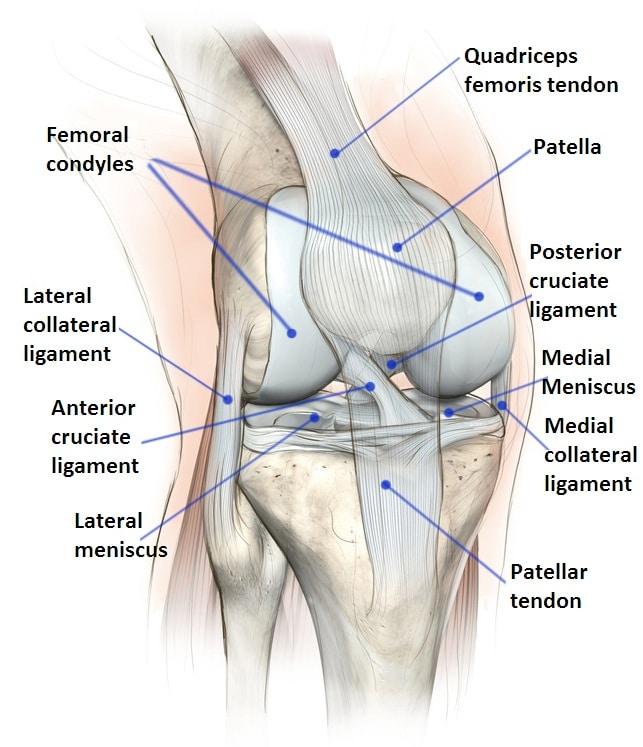 Meniskus, Läsion, Verletzung, Schaden, Ruptur, Riss, Knie, Schmerzen, Schmerz, Entzündung, Physiotherapie, Rehabilitation